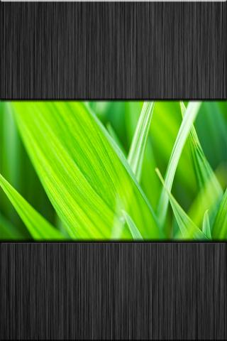 Download i.Simply Green Wallpapers 1.0