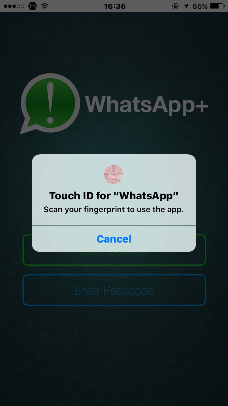 Download WhatsApp ++ 1.6r-85